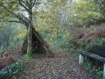 Venture up through the woodland walk & wildlife meadow