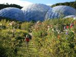 The Eden Project only 45 mins away by car