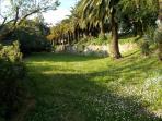parc pelouse