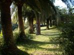 parc palmeraie