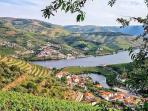 Drone View of the Douro Valley