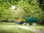 Les roulottes sont installées à l'ombre sur une clairière d'un hectare