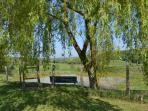 fenced pond