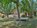 049 Campanet Mallorca Finca