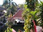 vue reposante depuis la terrasse