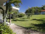 Shalom-Backyard