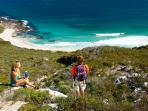 Walk the stunning Cape to Cape Track