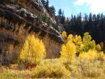 On the way to Cedar Breaks or Bryce you can go through Cedar Canyon, this is in the fall of course