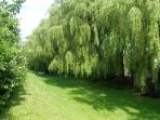 The Willows and Green between the Arun River and the House