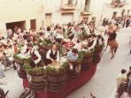 Festa Maria SS di Tagliavia a Maggio- Ceto viticultori