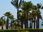 Urbanización en primera línea de playa