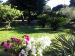 giardino usufruibile recintato