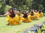 Hula Performance at Hawaii Volcanoes National Park