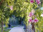 Jardín del Nacimiento. Vélez