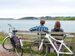 WHY NOT CYCLE THE CAMEL TRAIL DURING YOUR STAY --lovely flat trail that runs alongside the estuary!!