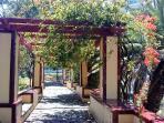 Surrounding areas - Gardens