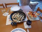 Today's catch of sardines