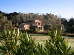PRIVATE VILLA BERTI located in Montescudaio  swimming pool 3 bedrooms/2 bathrooms
