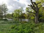 Regent's Park is a Few Minutes Walk