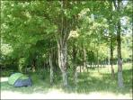 Emplacement Camping sous bois. Tarif 5 euros/personne/nuit