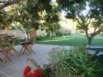 terraza y jardines