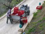 Trasporto delle olive al frantoio di Mazzarino