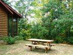 The Picnic Area in the Side Yard