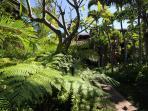 Kihei Resort gardens