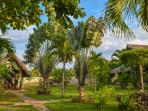 Chalet Tropical Garden view