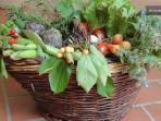 B&B Lacasadicampagna Cesto di frutta dell'orto