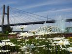 Quincy Bridge and an Abundance of flowers