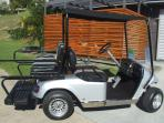 4 Seater Buggy - Available for Hire