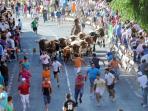 fiestas patronales, encierros del 11 al 17 de julio