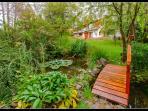 Outdoor Ponds