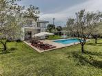 Villa SMRIKVE LOUNGE - olive trees around swimming pool area