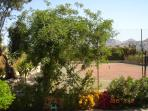 View from Garden Bedroom