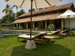 Pool  & the garden