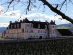 Visit of the Clos Vougeot and vineyards Romanée-Conti : a must !