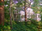 Ivy Woods 126151