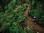 Bike Trail (3 min away)