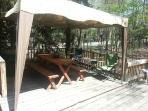 New Canopy