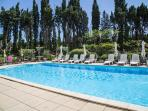 Shared 12m x 6m swimming pool