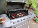 BBQ great for backyard picnics....