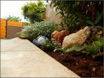 Detail in garden :)