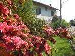 B&B Laghi: Maggiore - Varese - Camabbio - Monate