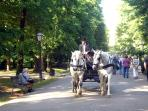 Park Maksimir, 3 km from apartment