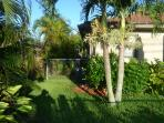 Lush tropical patio