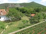 The house (left), barbecue (right), a few fruit trees and as many potatoes as You can eat.