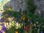 Beautiful gardens at North Down