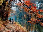 The canal tow-path in the Fall. Its great for walking or riding bikes into downtown New Hope, Pa